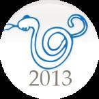2013-cong-ty-co-phan-ngv