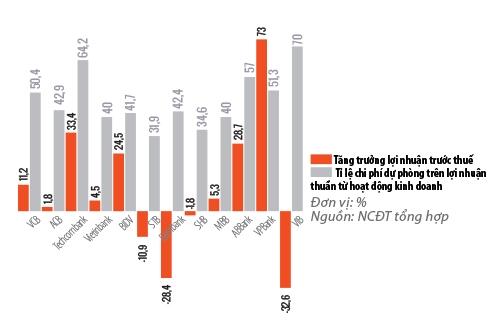 Tốc độ tăng trưởng lợi nhuận chậm lại vì chi phí trích lập dự phòng cao