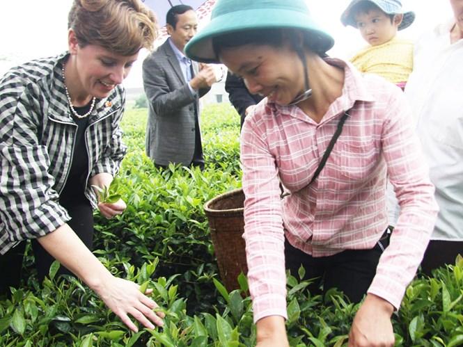 Bộ trưởng Bibeau đã đến thăm Dự án phát triển nông nghiệp do Canada tài trợ tại tỉnh Hà Tĩnh - Ảnh do Đại sứ quán Canada cung cấp