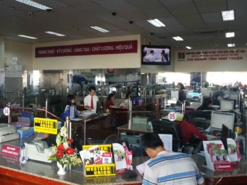 Agribank Ninh Thuận tích cực cho vay theo chuỗi liên kết