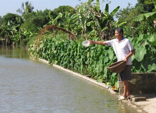 Ông Nguyễn Quang Xứng bên ao cá nhà