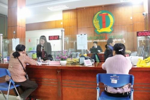 """Mô hình giao dịch """"một cửa"""" của QTDND Thị trấn Nông trường Mộc Châu tạo điều kiện thuận lợi cho khách hàng"""