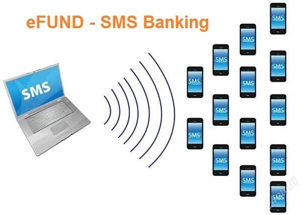 efund sms banking 3