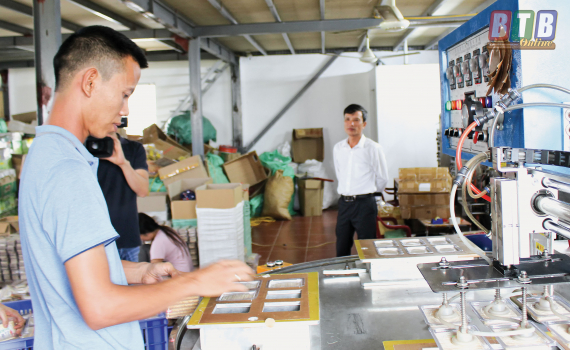 Cơ sở sản xuất tăm tre Thanh Bình An Đông (thôn Lai Triều, xã Thụy Dương, huyện Thái Thụy) phát triển sản xuất nhờ một phần nguồn vốn của Quỹ Tín dụng nhân dân Thụy Dương.